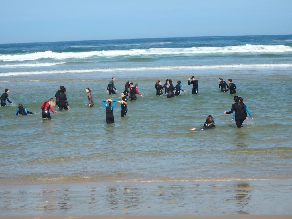 Surf en la costa