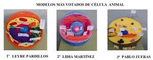 modelos célula animal