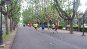 Foto parque